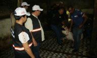 Prefeitura, Governo e Ministério Público deflagram operação Carne Legal