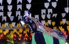 Grupos de bumba meu boi de vários sotaques animam Arraial da Maria Aragão