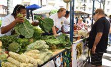 Feirinha São Luís fortalece a produção agrícola da capital, 7ª edição acontece neste domingo (23)