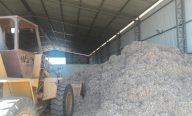 Aged fiscaliza fábrica de briquetes em Balsas