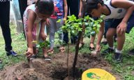Prefeitura de São Luís realiza ação de plantio de mudas em escolas da rede municipal