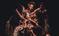 Chico, Eu e Buarque é o espetáculo da noite desta terça-feira (16) na Semana de Dança